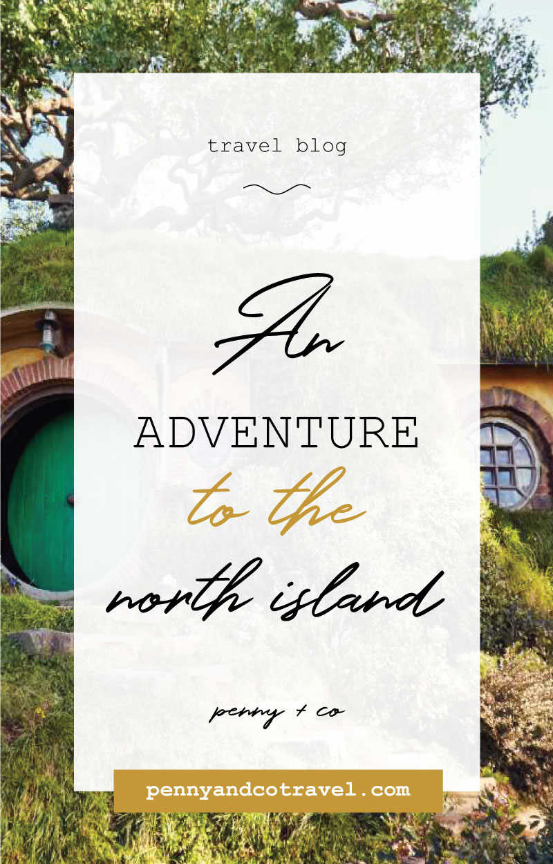 An adventure to the north island new zealand
